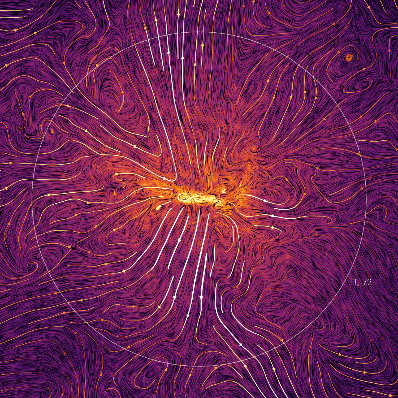 Strömungsbild der Gasbewegungen in der Umgebung einer einzelnen TNG50-Galaxie